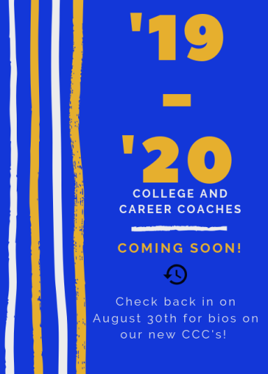 College and career coaches